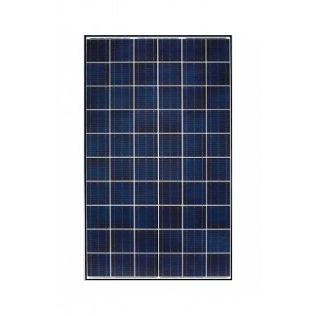 Byd Solar Panel 260w
