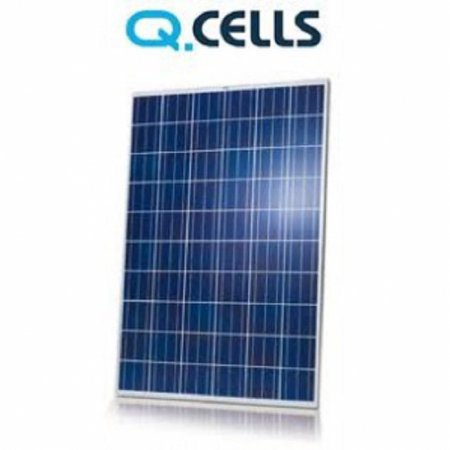 QCells Qplus solar panel