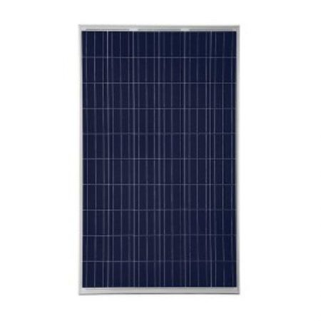 Risen - 275w - RSM60-6-275P | UV Power | Brisbane Solar Company