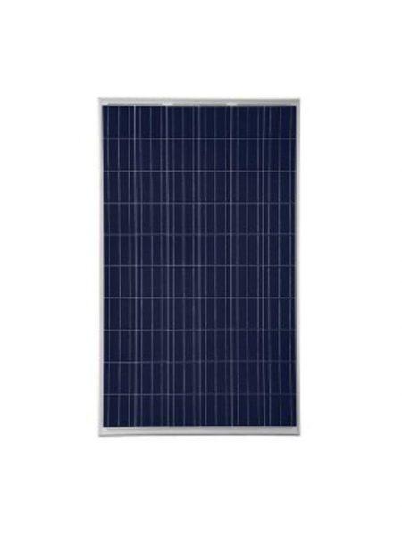 Trina Honey Solar Panel
